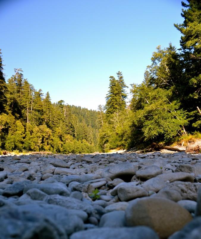 Redwood Natl Park Riverbed