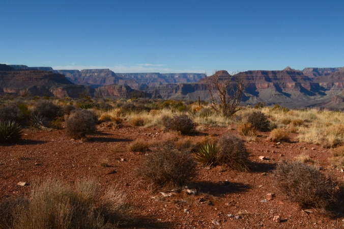 Inside the Grand Canyon.JPG