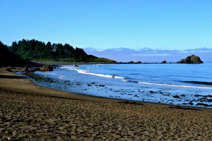 Redwood Natl Park Beach.jpg